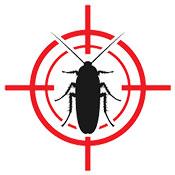exterminator roaches
