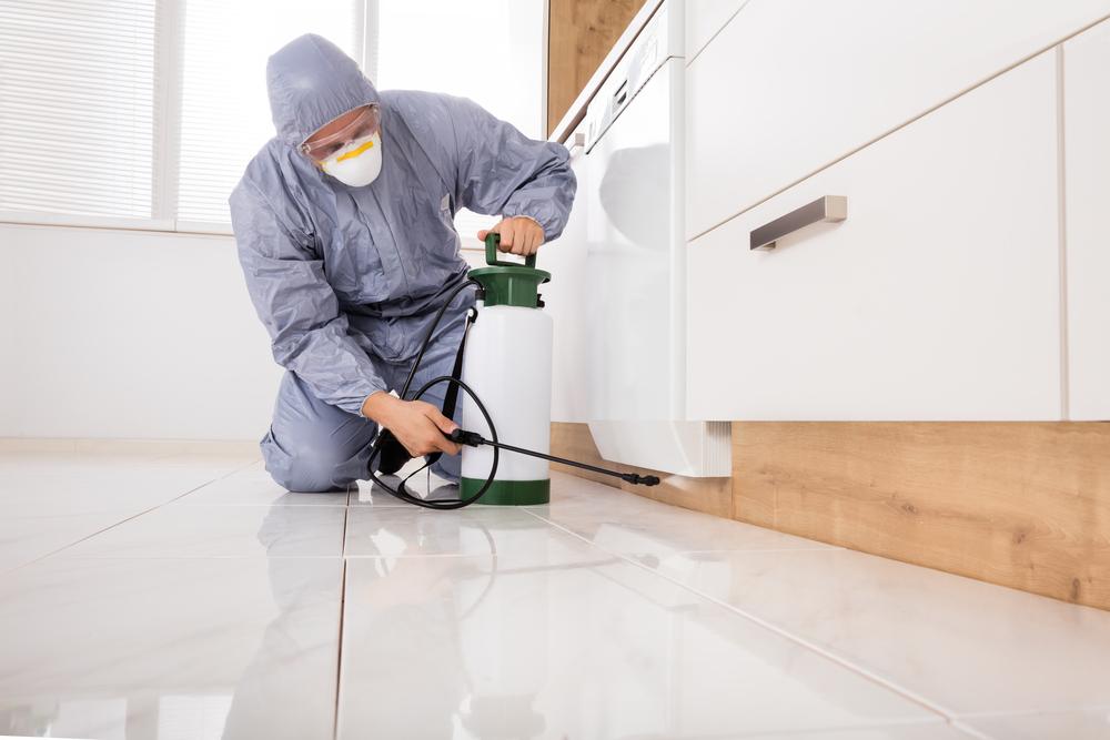 Las Vegas Pest Removal Exterminator In Workwear Spraying Pesticide With Sprayer